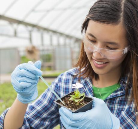 student working on botany